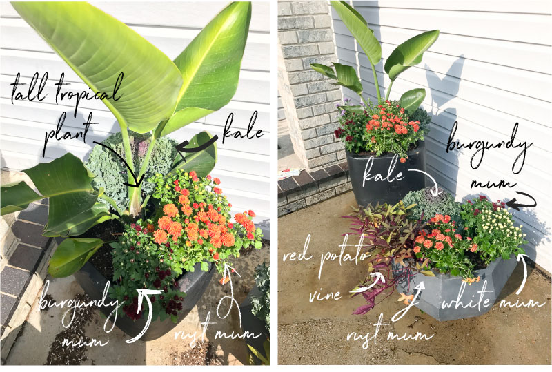 HOW TO UPDATE YOUR FLOWER POTS FOR FALL
