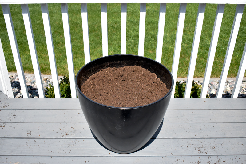 How to Plant a Container Flower Pot - Tutorial
